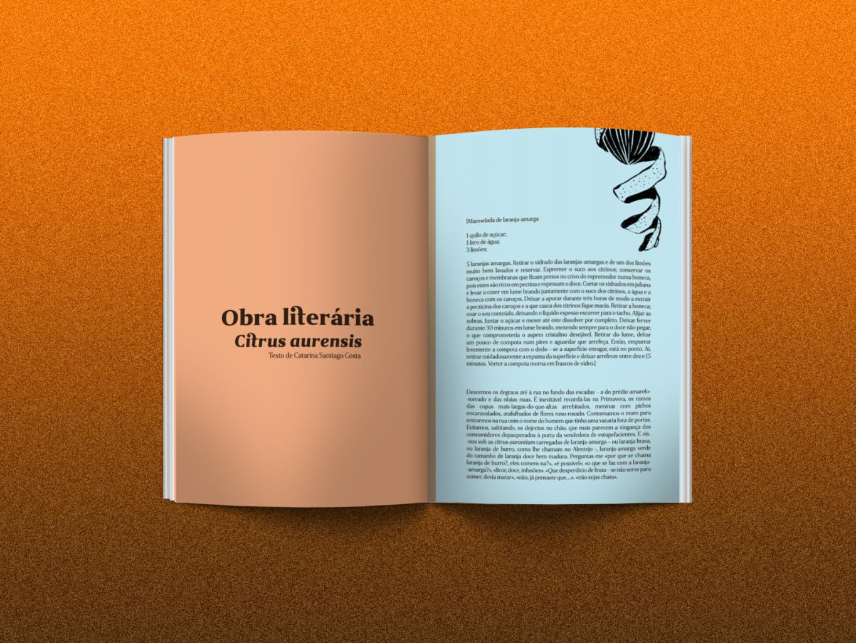 Obra-literaria-revista-gerador
